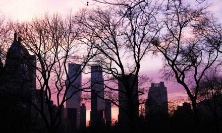 Reisetagebuch New York – PART 3| Woche 2